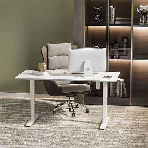 Humanmotion White Color Electric Sit-Stand Desk