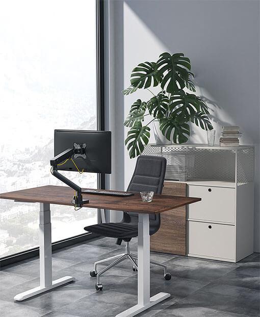 Single-Motor Sit-Stand Desk